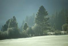 Snowscape, Yosemite, Калифорния Стоковое фото RF