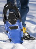Snowshoe Bottom. Man in blue jeans raises bottom of snowshoe out of snow Stock Images