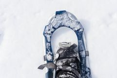 Snowshoe in fresh show. Snowshoe in fresh snow with space for copy Stock Photo