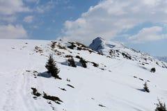 Snowshoe hike between Gasselhohe and  Rippetegg peak Royalty Free Stock Photo