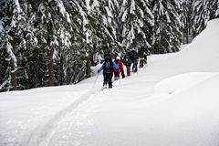 Snowshoe hikers. Group of snowshoe hikers in the forest Stock Photo