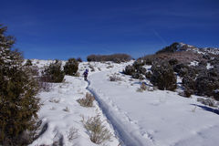 Snowshoe hikers ascend a hill Stock Images