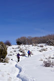 Snowshoe hikers ascend a hill. In the mountains of Colorado royalty free stock images