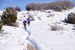 Snowshoe hikers ascend a hill. In the mountains of Colorado stock photography