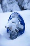 Snowshoe nella neve Fotografia Stock Libera da Diritti