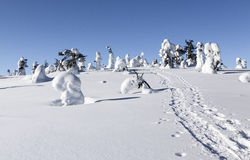 Snowshoe path. In mountain in Lapland called Riisitunturi Royalty Free Stock Image