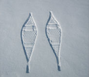 Snowshoe Prints. A pair of snowshoe prints in the snow Stock Photography