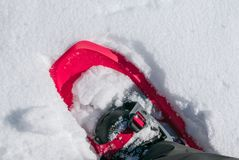 Snowshoe punched in the snow. Detail background of mountain hiker Royalty Free Stock Image