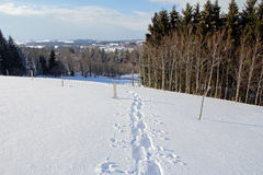 Snowshoe tracks in the snowy landscape Royalty Free Stock Photo