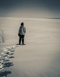 Snowshoe trail. Person snowshoeing in the winter in prince edward island Royalty Free Stock Photography
