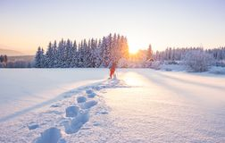 Snowshoe walker running in powder snow with beautiful sunrise light. Outdoor winter activity and healthy lifestyle Royalty Free Stock Photos