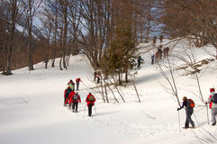 Snowshoe walking. Group of people walking in the snow with snowshoe Stock Photography