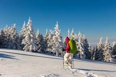 snowshoeing在一个晴天的女孩 免版税库存照片