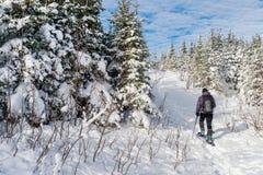 snowshoeing在冬天的年轻人,在魁北克东部乡 免版税库存照片