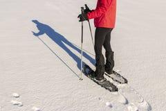 Snowshoeing - οδοιπορία γυναικών με τα πλέγματα σχήματος ρακέτας στοκ φωτογραφία με δικαίωμα ελεύθερης χρήσης