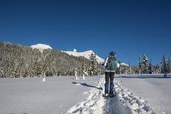 Snowshoeing Image libre de droits