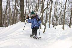 Snowshoeing. A woman snowshoes through the woods Royalty Free Stock Photo
