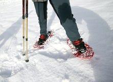 在山的Snowshoeing在白色软的雪 免版税库存照片