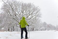 Snowshoeing immagini stock