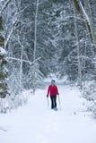 snowshoeing 库存照片