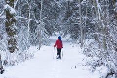 Snowshoeing Foto de archivo libre de regalías