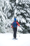 snowshoeing Fotografering för Bildbyråer