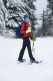 snowshoeing Images stock