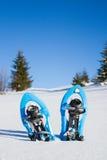 snowshoeing canada fotografii Quebec śniegu snowshoeing karple Obrazy Royalty Free