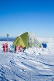 snowshoeing canada fotografii Quebec śniegu snowshoeing karple Zdjęcia Royalty Free