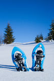 snowshoeing canada fotografii Quebec śniegu snowshoeing karple Zdjęcia Stock