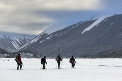 Snowshoeing the Canadian Rockies Royalty Free Stock Image