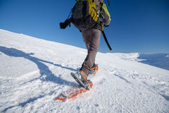 Snowshoeing in Carpathian mountains Royalty Free Stock Photos