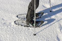 Snowshoeing closeup. Snowshoes. Snowshoeing closeup. Woman hiking in snow on snowy winter day royalty free stock photography