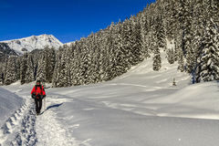 Snowshoeing, dolomites Photographie stock