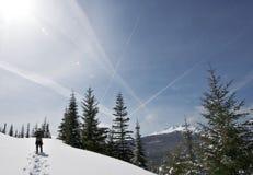 Snowshoeing door de Piek van de Diamant Stock Foto's
