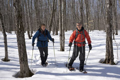 Snowshoeing en el parque de McLeans, isla de Manitoulin Foto de archivo