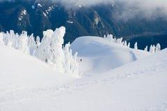 Snowshoeing en le pays des merveilles de l'hiver Images libres de droits