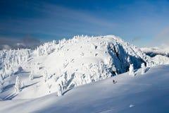 Snowshoeing en le pays des merveilles de l'hiver Photos stock