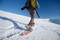 Snowshoeing in Karpatische bergen Royalty-vrije Stock Foto's