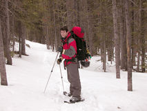 Snowshoeing - Montana. Snowshoeing up the Lake Fork in Montana's Beartooth Mountains stock image