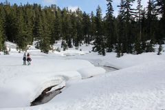 Snowshoeing in Mount Seymour in North Vancouver   Stock Photos