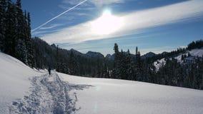 Snowshoeing Paradies Lizenzfreies Stockfoto