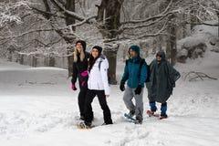 Snowshoeing, quatre personnes sur la montagne couverte de neige Arbres dedans Images stock