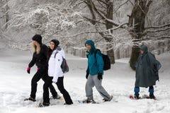 Snowshoeing, quatre personnes sur la montagne couverte de neige Arbres dedans Image libre de droits