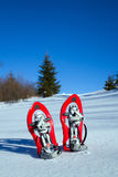 snowshoeing Sneeuwschoenen in de sneeuw Royalty-vrije Stock Afbeeldingen