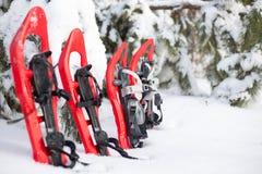 snowshoeing Sneeuwschoenen in de sneeuw Royalty-vrije Stock Afbeelding
