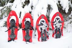 snowshoeing Sneeuwschoenen in de sneeuw Stock Afbeeldingen