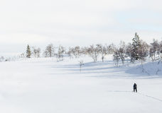 Snowshoeing in snow covered field  Stock Image