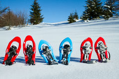snowshoeing Snowshoes im Schnee Stockbild