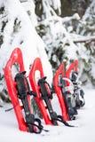 snowshoeing Snowshoes im Schnee Lizenzfreie Stockfotografie